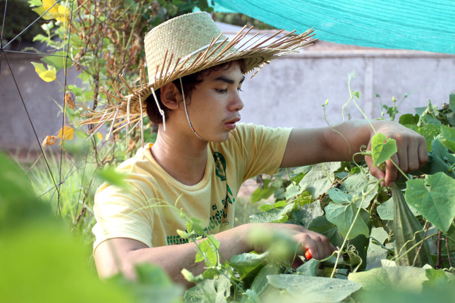 Youths, like Vannak, who participate in the home gardening activities are able to harvest vegetables for their family consumption and share equally in earnings from sold produce. PHOTO: Philong Sovan