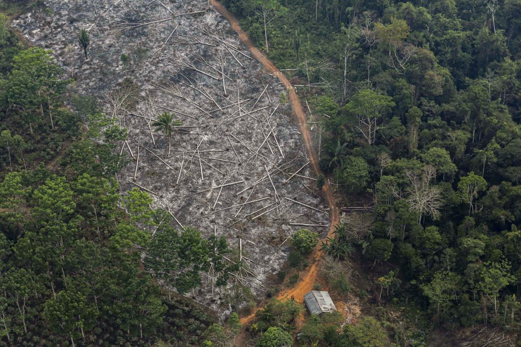 """This is an aerial view of a deforested plot of the Amazon at the Bom Futuro National Forest in Porto Velho, Brazil on 3 September 2015. In a message sent in early July to participants of an Italian conference on the consequences of deforestation in the Amazon, Pope Francis said the current situation in the South American rainforest """"is a sad paradigm of what is happening in many parts of the planet"""". Photo: Nacho Doce/Reuters."""